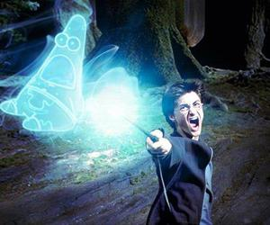 harry potter, patrick, and funny image