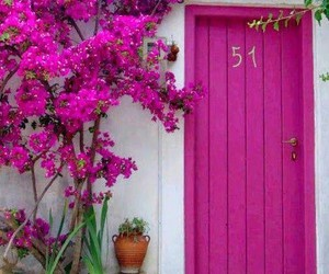 door, pink, and flowers image