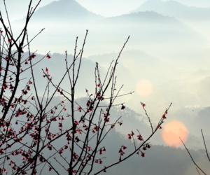 amazing, fog, and mountains image