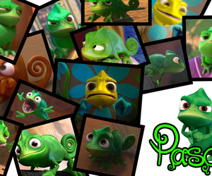 disney, pascal, and tangled image