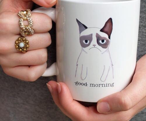 cat, morning, and cup image