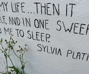 sleep, the bell jar, and suicide image