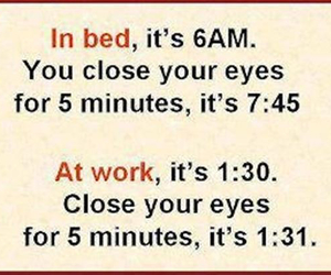 funny, true, and quotes image