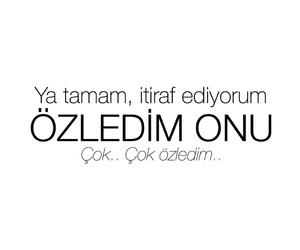 türkçe sözler, ask, and love image