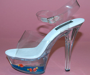 fish and heels image