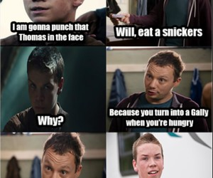 funny, gally, and snickers image