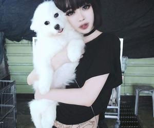 girl, dog, and black image