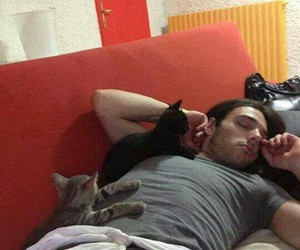 cats, asleep, and heavy metal image
