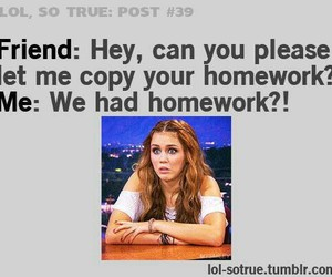 homework, funny, and miley cyrus image
