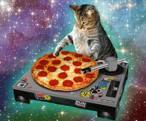 cat, pizza, and dj image