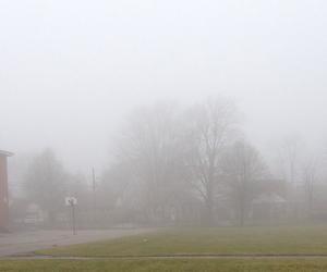 abandoned, fog, and foggy image