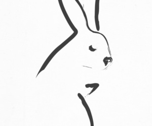 caligraphy, hare, and simple image