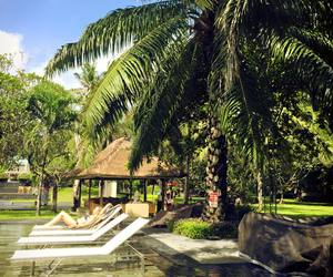 bali, palms, and places image