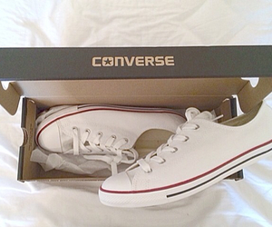 converse, shoes, and animal image