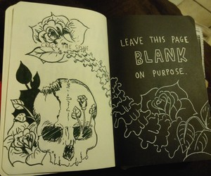 blank, skull, and wreck this journal image