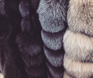 fashion, fur, and luxury image