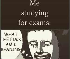 exam, exams, and funny image