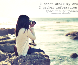 quote, beach, and camera image