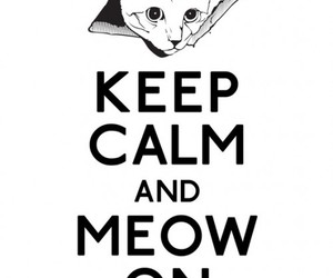 keep calm and meow image