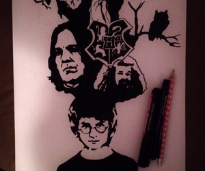 owl, art, and harry potter image