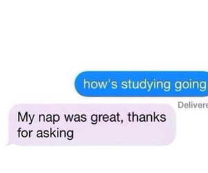 funny, nap, and study image
