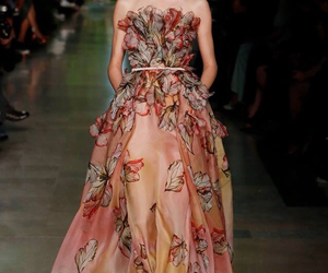 butterflies, colors, and elie saab image