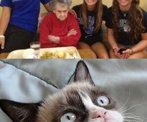 grandma, funny, and lol image
