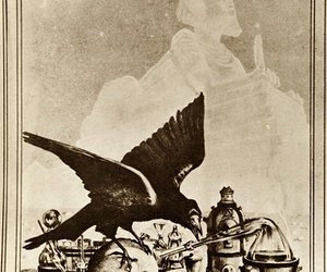 skull and raven image