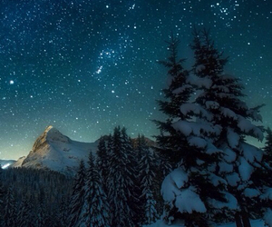 stars, snow, and tree image