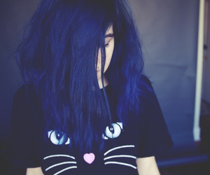 blue, cat, and hair image