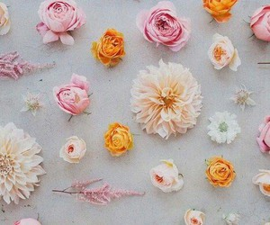 flowers, girly, and wallpaper image