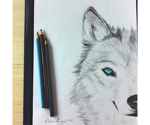 drawing, wolf, and beautiful image
