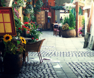 flowers, Poland, and street image