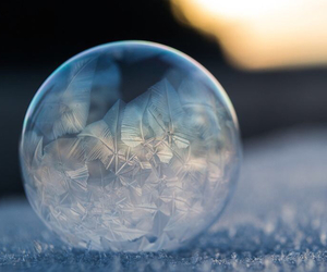 winter and bubbles image