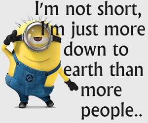 funny, minions, and i'm not short image