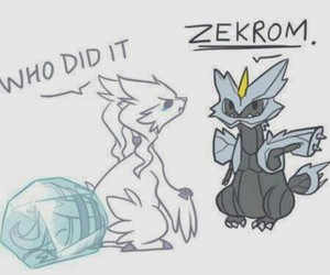pokemon, reshiram, and zekrom image