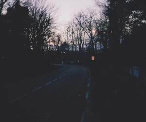 grunge, trees, and dark image