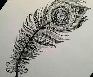 draw and pluma image