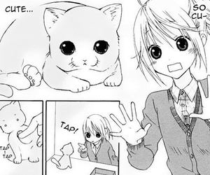 manga, cute, and cat image