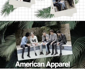 american apparel, four, and the image