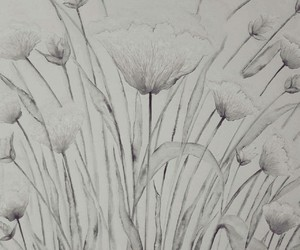black, drawings, and flowers image
