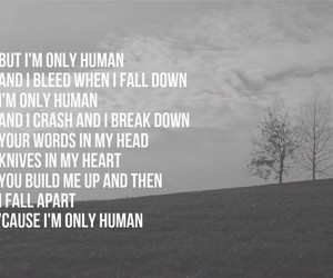 human and Lyrics image
