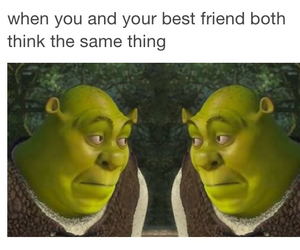 funny, shrek, and friends image