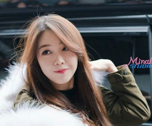 gsd, minah, and cute image