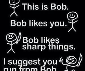 bob, funny, and run image