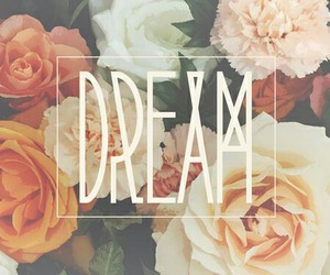 Dream, flowers, and rose image