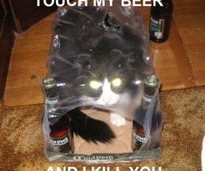 beer, cats, and kill image