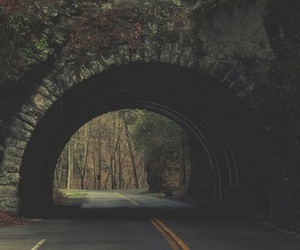 road, nature, and tunnel image