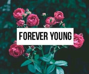 young, flowers, and forever image