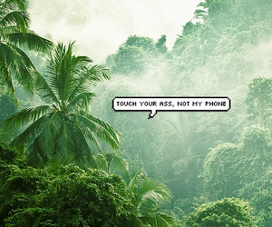 background, phone, and tropical image